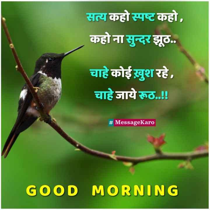 👌 अच्छी सोच👍 - सत्य कहो स्पष्ट कहो , कहो ना सुन्दर झूठ . . चाहे कोई खुश रहे , चाहे जाये रूठ . . ! ! # MessageKaro GOOD MORNING - ShareChat