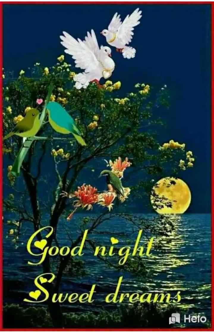 💐इतर शुभेच्छा - Good night Sweet dreams a Heto - ShareChat
