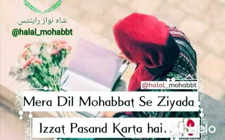 🤲 इबादत - شاہ نواز رایئٹس . @ halal _ mohabbt seal @ halal _ mohabbt Mera Dil Mohabbat Se Ziyada Izzat Pasand Karta hai . . bo - ShareChat