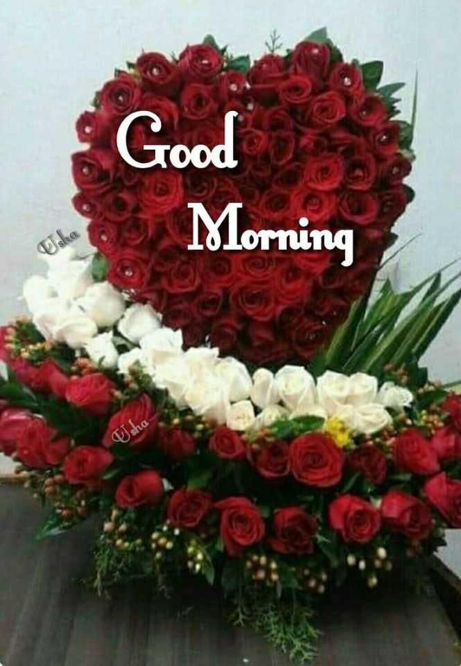 📸इमेज स्टेटस - Lood Morning sha - ShareChat