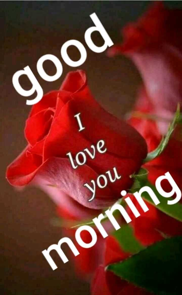 💏 इश्क़-मोहब्बत - good love you morning - ShareChat