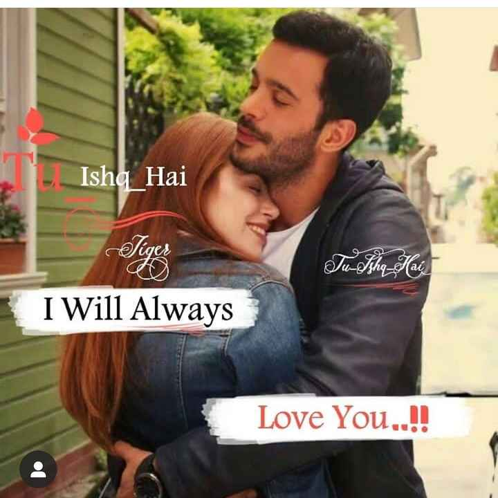 💏 इश्क़-मोहब्बत - Ishq Hai Tiger Tu - Ishq Hai I Will Always Love You . . ! ! - ShareChat