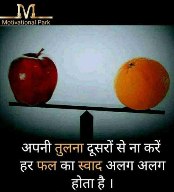 📖एग्जाम मोटिवेशन - M Motivational Park अपनी तुलना दूसरों से ना करें हर फल का स्वाद अलग अलग होता है । - ShareChat