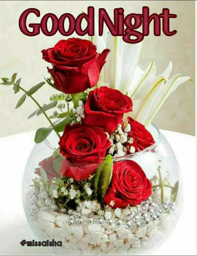 🌙 गुड नाईट - Good Night + missaisha - ShareChat