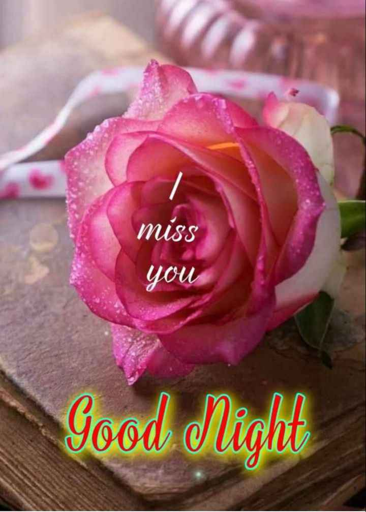🌙 गुड नाईट - miss you Good Night - ShareChat