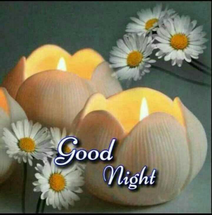 🌙 गुड नाईट - on Good Night - ShareChat