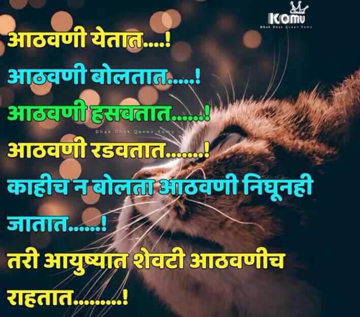 💔जख्मी दिल - komu Dhak Dhak Queen आठवणी येतात . . . ! आठवणी बोलतात . . . . ! आठवणी हसवतात . आठवणी रडवतात . काहीच न बोलताभआठवणी निघूनही जातात . . . . . ! तरी आयुष्यात शेवटी आठवणीच राहतात . . . . . . . . . - ShareChat