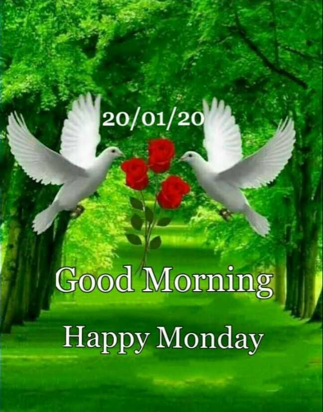🙏 जय जोहार - 20 / 01 / 20 Good Morning Happy Monday - ShareChat