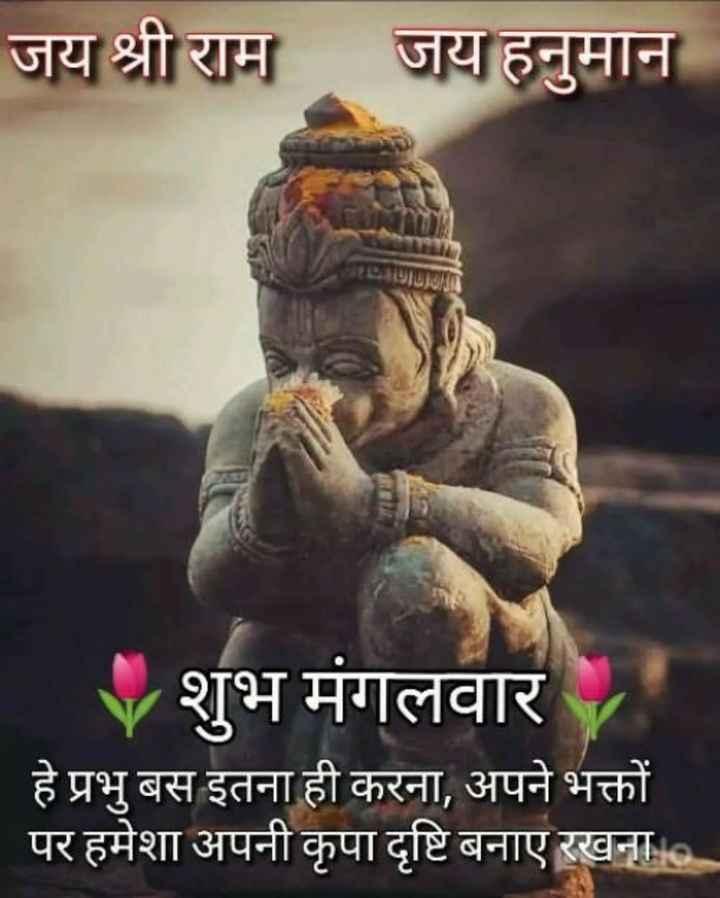 🙏🌺जय बजरंगबली🌺🙏 - जय श्री राम जय हनुमान JEDADUDDHA शुभ मंगलवार हे प्रभु बस इतना ही करना , अपने भक्तों पर हमेशा अपनी कृपा दृष्टि बनाए रखना . . . - ShareChat