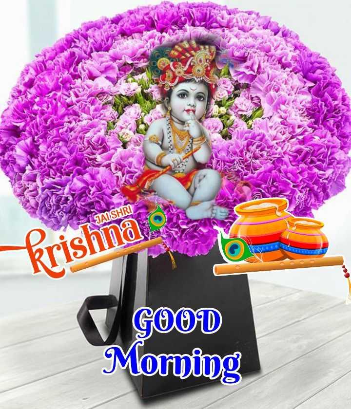 🌸 जय श्री कृष्ण - JAI SHRI krishna GOOD Morning - ShareChat