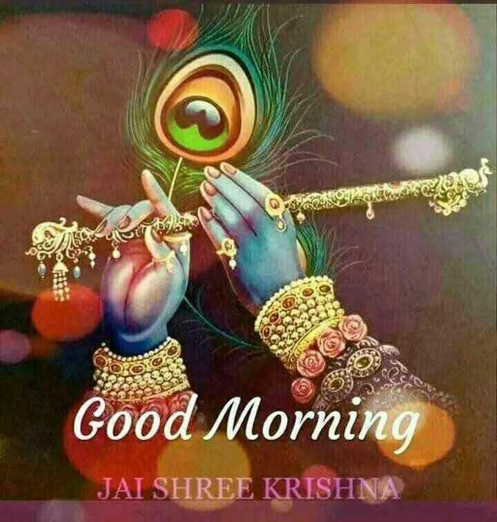 🌸 जय श्री कृष्ण - Good Morning JAI SHREE KRISHNA - ShareChat