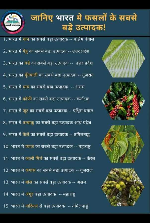 📢जॉब्स/एग्जाम नोटिस बोर्ड - जानिए भारत मे फसलों के सबसे बड़े उत्पादक ! आपणी पाठशाला 1 . भारत में धान का सबसे बड़ा उत्पादक - - पश्चिम बंगाल 2 . भारत मे गेंहू का सबसे बड़ा उत्पादक - - उत्तर प्रदेश । 3 . भारत का गन्ने का सबसे बड़ा उत्पादक . . उत्तर प्रदेश 4 . भारत का मूंगफली का सबसे बड़ा उत्पादक - - गुजरात । 5 . भारत मे चाय का सबसे बड़ा उत्पादक - - असम । 6 . भारत मे कॉफी का सबसे बड़ा उत्पादक - - कर्नाटक । 7 . भारत मे जूट का सबसे बड़ा उत्पादक - - पश्चिम बंगाल 8 . भारत मे तम्बाकू का सबसे बड़ा उत्पादक आंध्र प्रदेश 9 . भारत मे केले का सबसे बड़ा उत्पादक - - तमिलनाडु _ _ _ 10 . भारत मे प्याज का सबसे बड़ा उत्पादक - - महाराष्ट्र 11 . भारत में काली मिर्च का सबसे बड़ा उत्पादक - - केरल 12 . भारत में कपास का सबसे बड़ा उत्पादक . . गुजराज ' 13 . भारत मे बांस का सबसे बड़ा उत्पादक - - असम 14 . भारत मे अंगूर बड़ा उत्पादक - - महाराष्ट्र 15 . भारत में नारियल से बड़ा उत्पादक - - तमिलनाडु - ShareChat