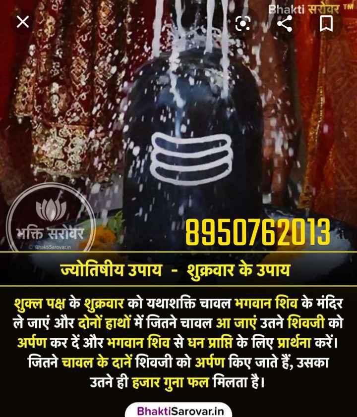 🔯ज्योतिष - Bhakti सरोवर TM Bhakti Satovarin ( भक्ति सरोवर ) , 8950762013 ज्योतिषीय उपाय - शुक्रवार के उपाय शुक्ल पक्ष के शुक्रवार को यथाशक्ति चावल भगवान शिव के मंदिर ले जाएं और दोनों हाथों में जितने चावल आ जाएं उतने शिवजी को अर्पण कर दें और भगवान शिव से धन प्राप्ति के लिए प्रार्थना करें । जितने चावल के दानें शिवजी को अर्पण किए जाते हैं , उसका उतने ही हजार गुना फल मिलता है । Bhakti Sarovar . in - ShareChat