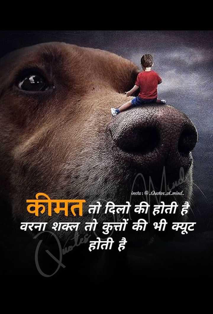 🆒 टैटू डिज़ाइन - insta : @ . Quotes - of - mind . कीमत तो दिलो की होती है वरना शक्ल तो कुत्तों की भी क्यूट होती है - ShareChat