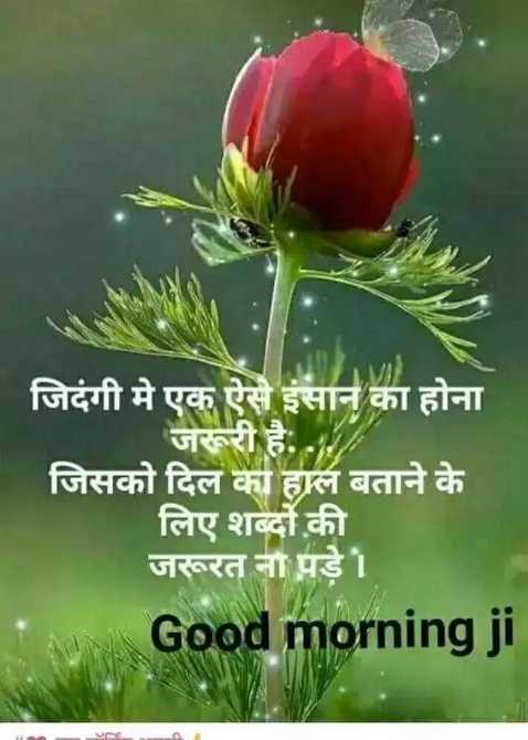 🌄तड़के की राम राम🙏 - जिदंगी मे एक ऐसे इंसान का होना जरूरी है . . जिसको दिल का हाल बताने के लिए शब्दों की जरूरत ना पड़े । Good morning ji - ShareChat
