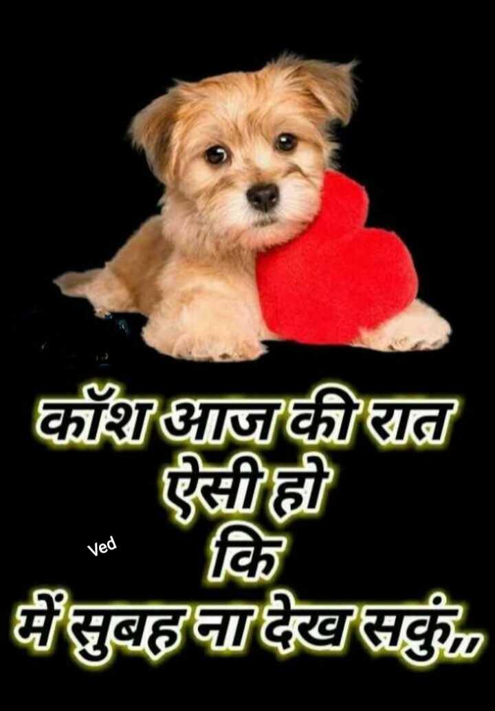 💔 दर्द-ए-दिल - काँशआज की रात ऐसी ही में सुबह ना देख सकु Ved - ShareChat