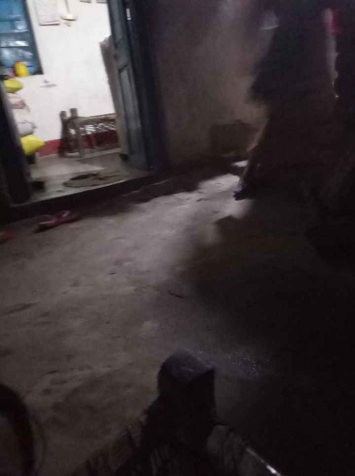 पडोसी के घर का वीडियो चैलेंज🏠 - ShareChat
