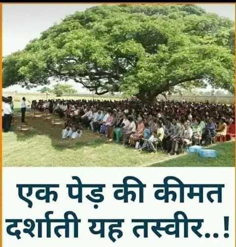 🌱पौधों को पानी - | एक पेड़ की कीमत दर्शाती यह तस्वीर . . ! - ShareChat
