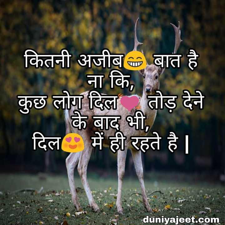 🌹प्रेमरंग - कितनी अजीब बात है ना कि , कुछ लोग दिल तोड़ देने के बाद भी , दिल में ही रहते है | duniyajeet . com - ShareChat