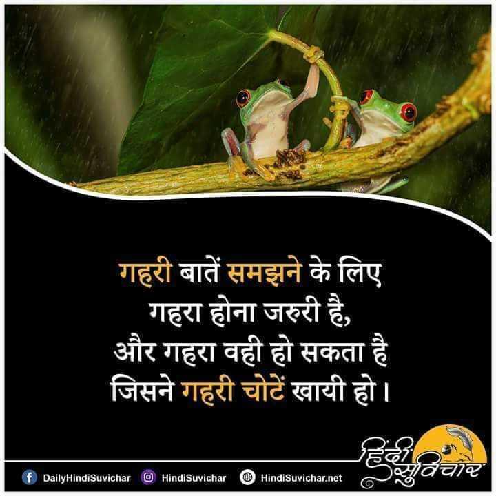 🙏प्रेरणादायक / सुविचार - गहरी बातें समझने के लिए | गहरा होना जरुरी है , और गहरा वही हो सकता है जिसने गहरी चोटें खायी हो । हाचार DailyHindiSuvichar HindiSuvichar HindiSuvichar . net - ShareChat