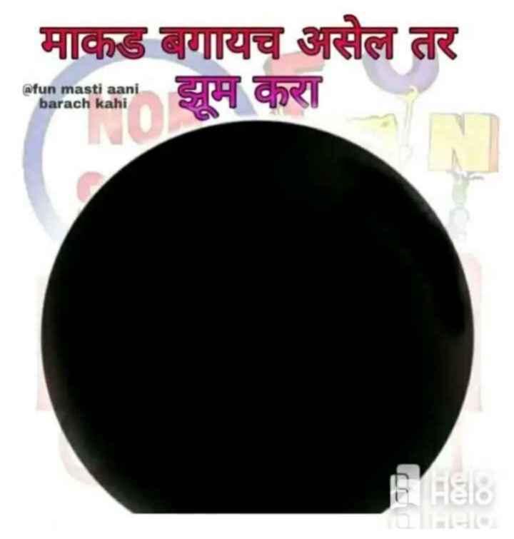 😹फनी जोक्स - माकड बगायच असेल तर aim maza झूम करा @ fun masti aani barach kahi Blias - ShareChat