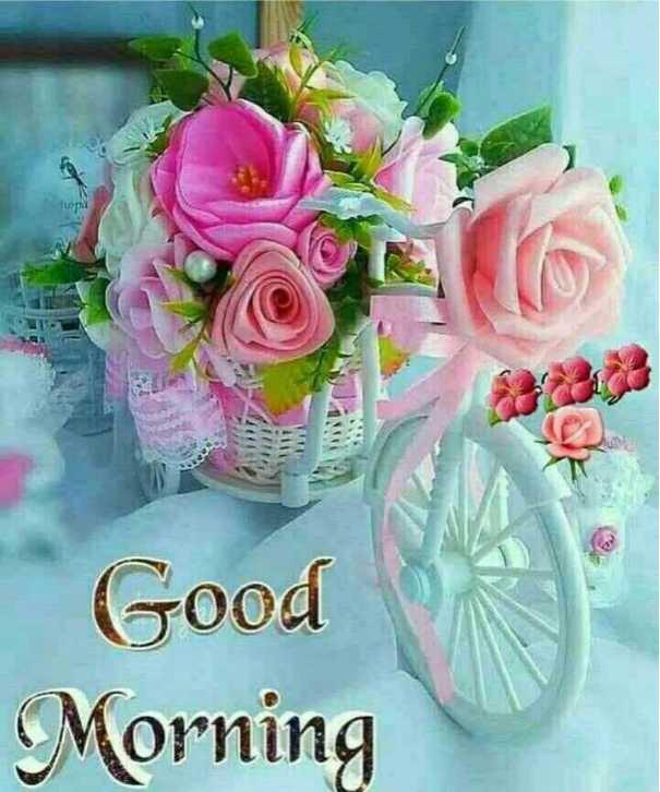 #फूल - Good Morning - ShareChat