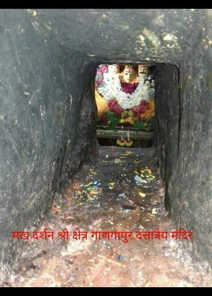 🙏भक्ती स्टेट्स - मख दर्शन श्री क्षेत्र गाणगापुर दत्तात्रेय मंदिर - ShareChat