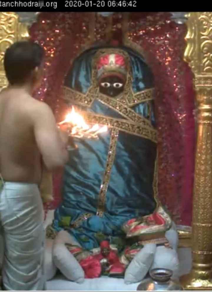 🌺 मंदिर के दर्शन - Ranchhodraiji . org 2020 - 01 - 20 06 : 46 : 42 - ShareChat