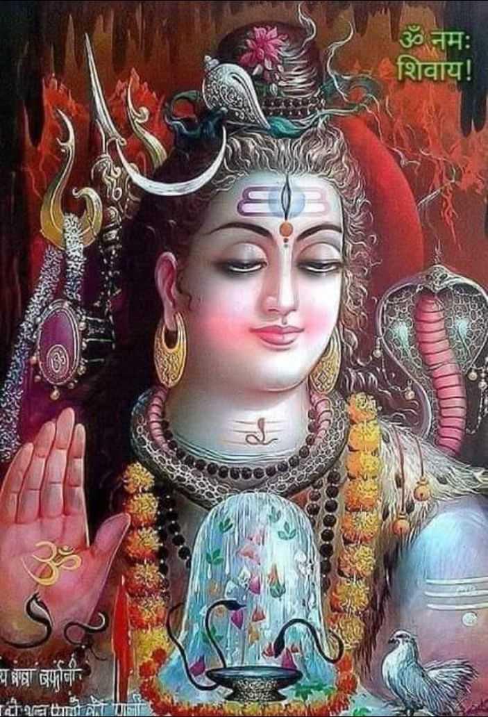 🌺 मंदिर के दर्शन - ॐ नमः शिवाय ! य प्रजा बर्फानी - ShareChat