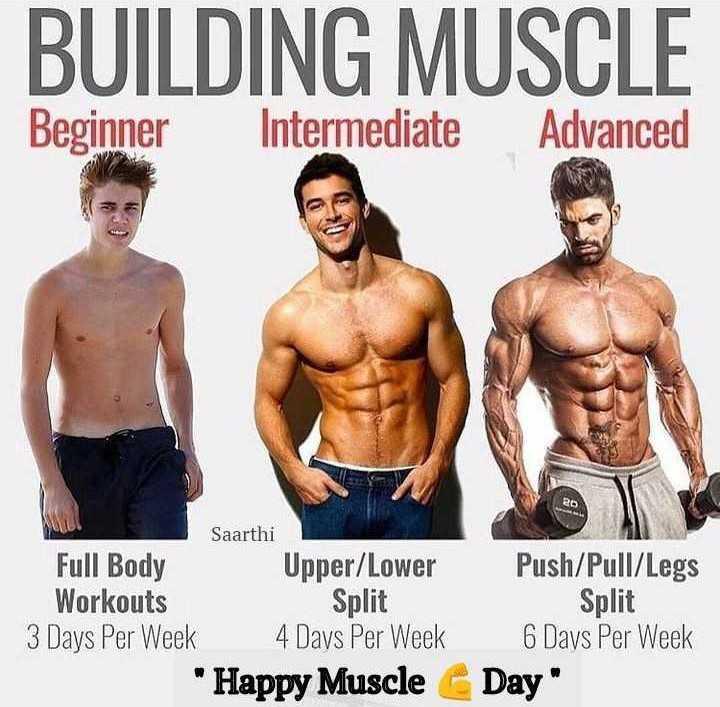 💪मसल्स डे - BUILDING MUSCLE Beginner Intermediate Advanced Saarthi Full Body Upper / Lower Workouts Split 3 Days Per Week 4 Days Per Week Happy Muscle Push / Pull / Legs Split 6 Days Per Week Day - ShareChat