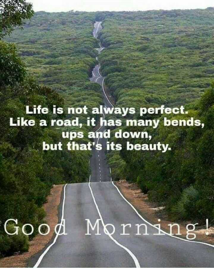 📒 मेरी डायरी - Life is not always perfect . Like a road , it has many bends , ups and down , but that ' s its beauty . Good Morning ! - ShareChat
