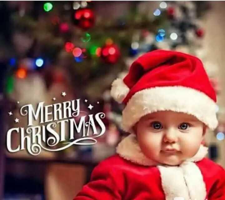 🎄मैरी क्रिसमस 🎅 - MERRY : CHRISTMAS - ShareChat