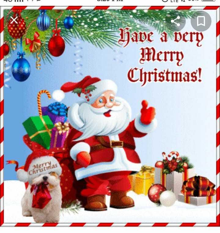 🎄मैरी क्रिसमस 🎅 - FU Have a very Merry Christmas ! cheemas - ShareChat