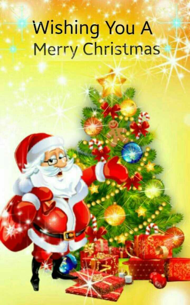 🎄मैरी क्रिसमस 🎅 - Wishing You A Merry Christmas - ShareChat