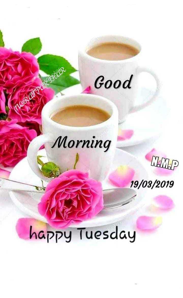 राजस्थानी स्टेटस - Good NORAT PARIHAR Morning N . M . P 19 / 03 / 2019 happy Tuesday - ShareChat