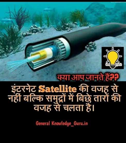 😏 रोचक तथ्य - क्या आप जानते हैं । इंटरनेट Satellite की वजह से नहीं बल्कि समुद्रों में बिछे तारों की वजह से चलता है । General Knowledge _ Guru . in - ShareChat