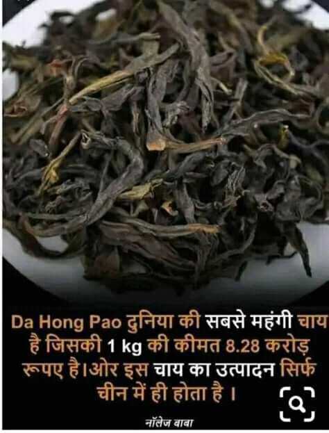 😏 रोचक तथ्य - | Da Hong Pao दुनिया की सबसे महंगी चाय है जिसकी 1kg की कीमत 8 . 28 करोड़ ' रूपए है । ओर इस चाय का उत्पादन सिर्फ चीन में ही होता है । c1 नॉलेज बाबा - ShareChat