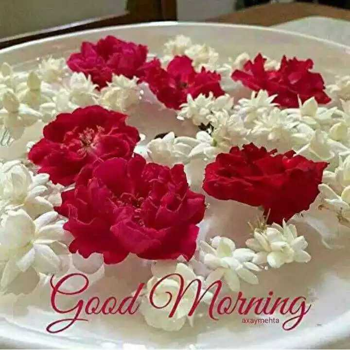 🎶 रोमांटिक गाने - Good Morning axaymehta - ShareChat