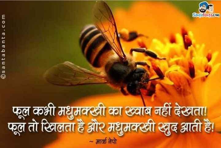 🐝 विश्व मधुमक्खी दिवस - Senfabenta . com ©santabanta . com फूल कभी मधुमक्खी का ख्वाब नहीं देखता ! फूल तो खिलता है और मधुमक्खी खुद आती है । ~ मार्क नेपो । - ShareChat