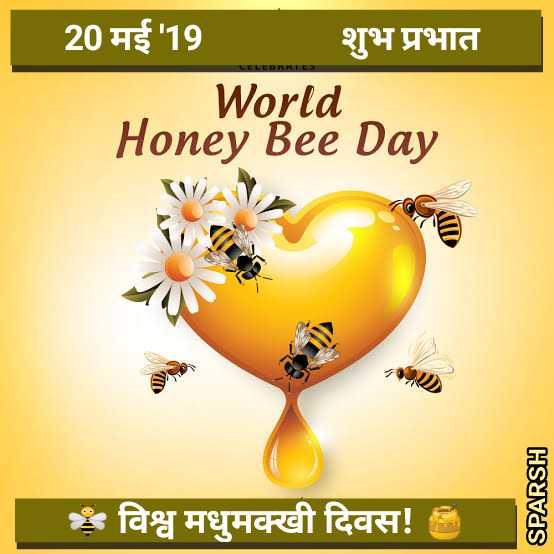 🐝 विश्व मधुमक्खी दिवस - 20 मई 19 शुभ प्रभात World Honey Bee Day SPARSH | विश्व मधुमक्खी दिवस ! - ShareChat