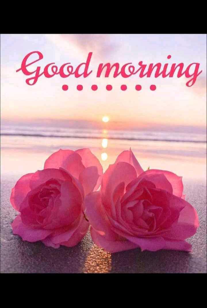 📸 वीडियो आर्टिस्ट - Good morning - ShareChat