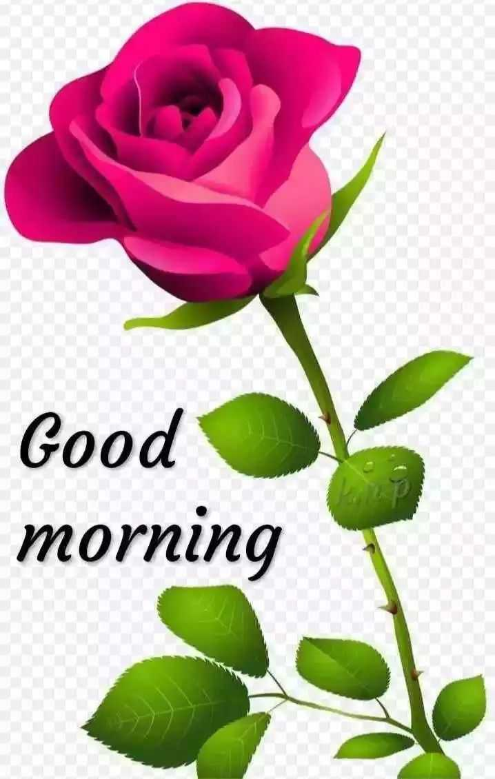 🌄 वॉलपेपर - Good morning - ShareChat