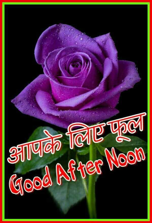 🕛 शुभ दोपहर - आपके लिए फ© Good After Noon - ShareChat