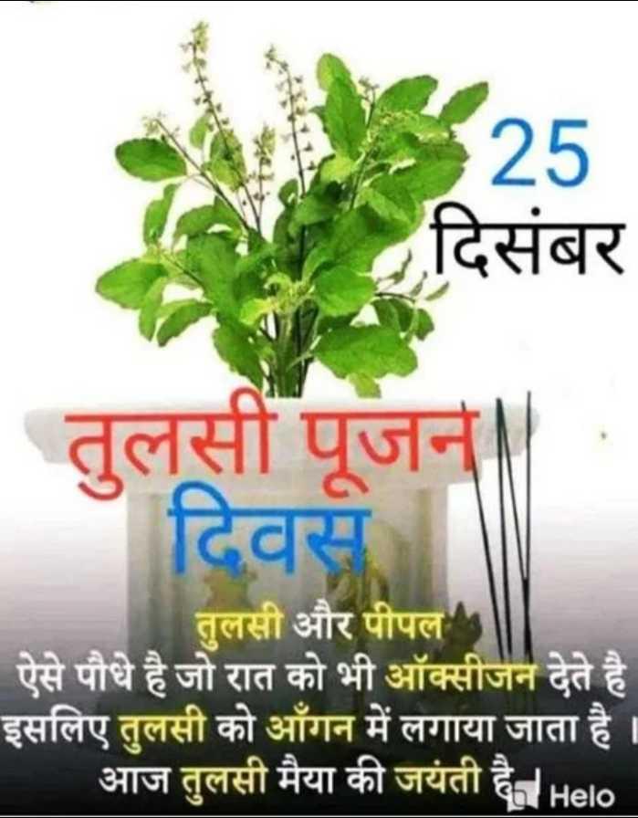 🌷शुभ बुधवार - A25 दिसंबर तुलसी पूजन दिवस तुलसी और पीपल ऐसे पौधे है जो रात को भी ऑक्सीजन देते है इसलिए तुलसी को आँगन में लगाया जाता है । आज तुलसी मैया की जयंती है की - ShareChat