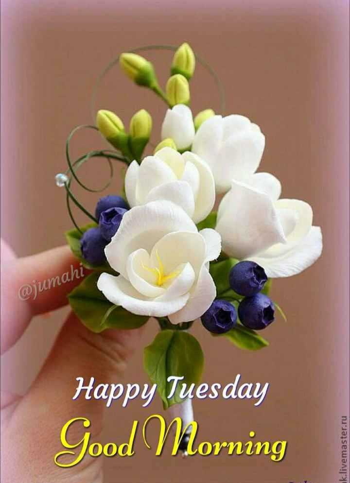 🌷शुभ मंगलवार - @ jumahi Happy Tuesday Good Morning k . livemaster . ru - ShareChat