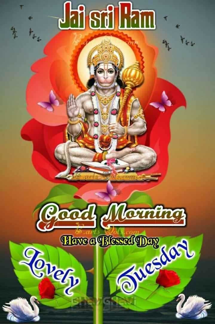 🌷शुभ मंगलवार - · Jai Sri Ram AA Cood Morning Have a Blessed Day Lovely Tuesday - ShareChat