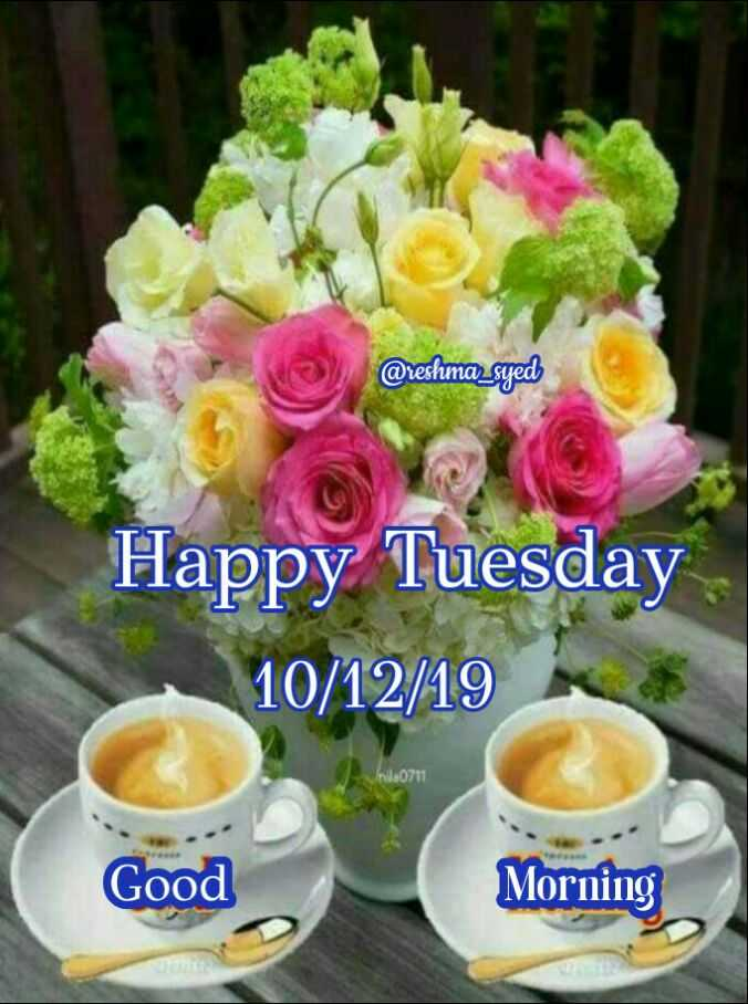 🌷शुभ मंगलवार - @ reshma _ syed Happy Tuesday 10 / 12 / 19 Good Morning - ShareChat