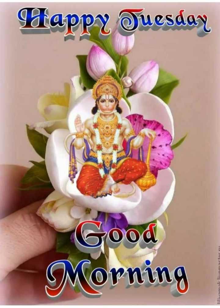 🌷शुभ मंगलवार - Happy Tuesday Good Morning torn liliamallivam - ShareChat