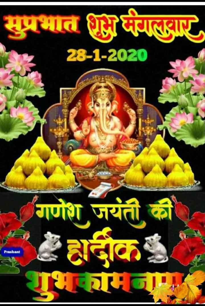 🌷शुभ मंगलवार - सुप्रभात शुभ मंगलवार 28 - 1 - 2020 गणेश जयंती की Prashant - ShareChat