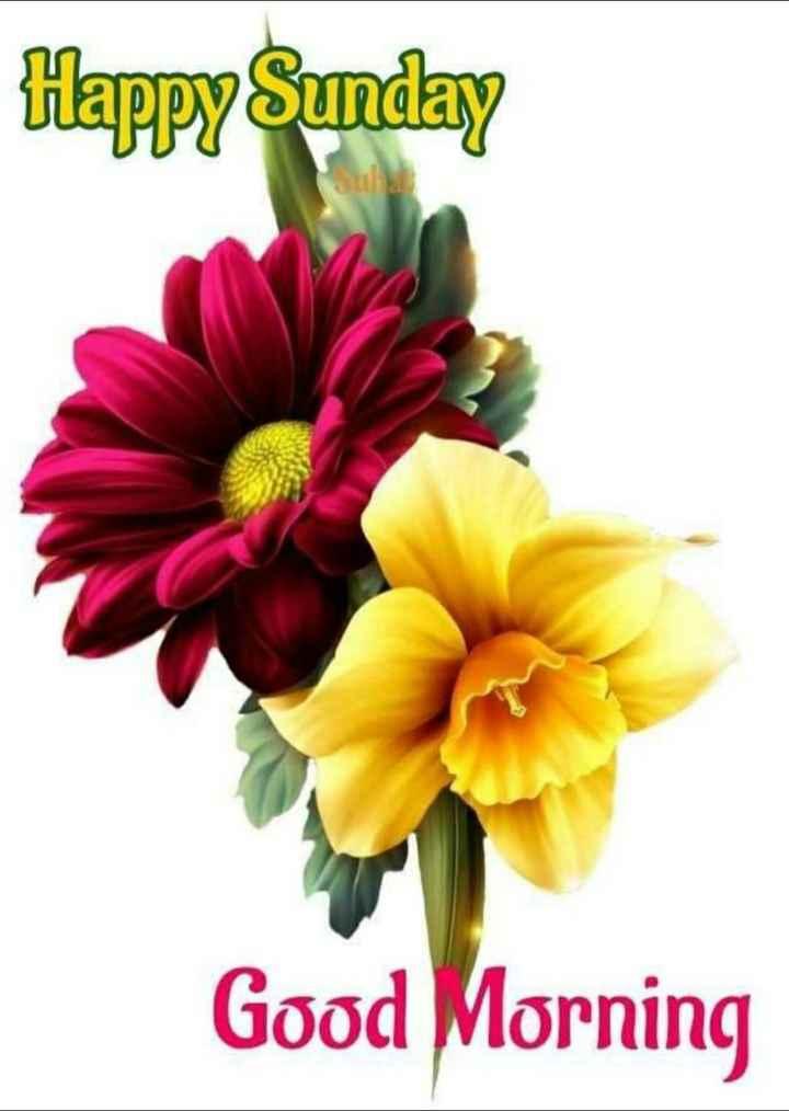 🌷शुभ रविवार - Happy Sunday Good Morning - ShareChat